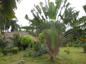 Die Hazienda Salto Alto, Dominikanische Republik