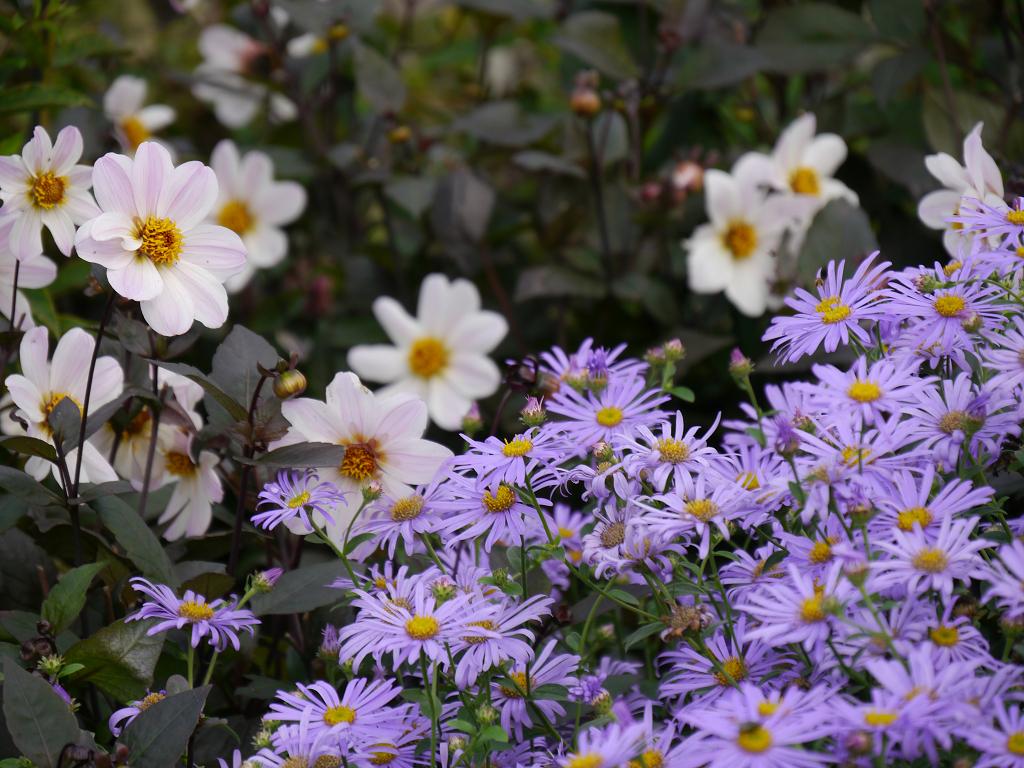 Walled Garden, Wakehurst, West Sussex