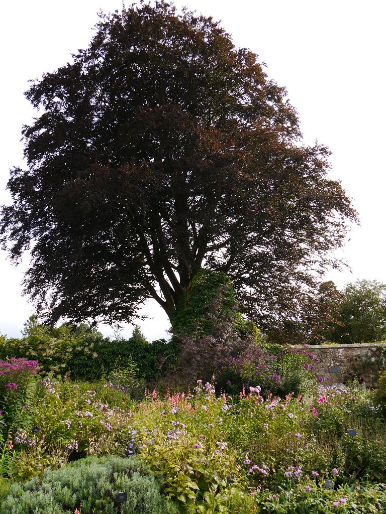 Walled Gardens, Wakehurst West-Sussex