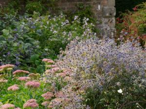 Ausgangsbereich Mauergarten, Wakehurst, West Sussex