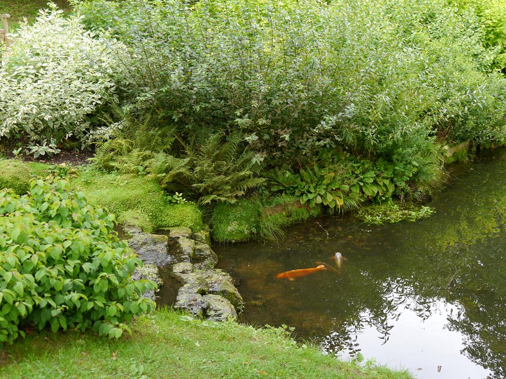 Wassergarten, Wakehurst, West-Sussex