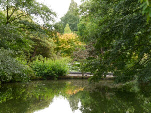Wassergarten, Wakehurst, West-Sussex