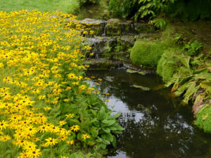 Wassergarten von Wakehurst, West-Sussex