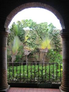 Ravenala, Baum der Reisenden, Innenhof Museo de las Casas Reales, Santo Domingo