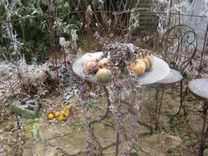 Frost in Wurzerlsgarten