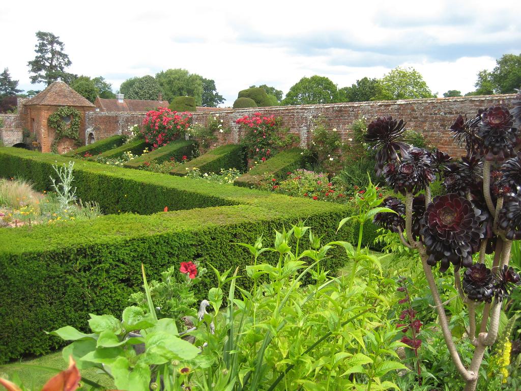 Blick auf die Mauer mit Rosen, vor dem Sunken Garden in Packwood House
