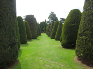 Yew Garden, Eibengarten, Packwood House