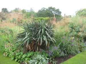 Yucca recurvifolia, Stipa gigantea, Carolean Garden, Packwood House