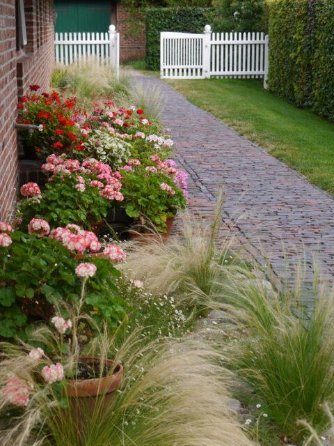 Garteneingang an der Hausseite von Moorriem