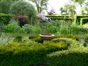 Junigarten mit Knot Garden Anfang Juni, Garten Moorriem