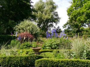 Junigarten mit Knot Garden Ende Juni, Garten Moorriem