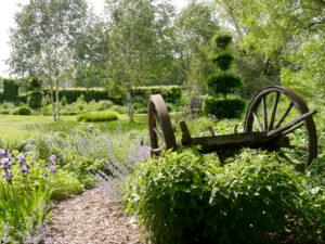 Wagenachse, im Wiesengarten im Juni, Garten Moorriem