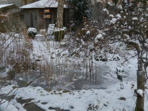 Teich Mitte Februar 2021 in Wurzerlsgarten
