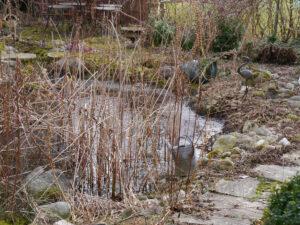 20.2. 21 am Teich in Wurzerlsgarten