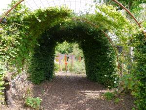 Monet-Bogen im Garten Erna de Wolff