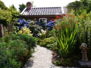 blaue Hortensienwolken am Backhaus im Garten Erna de Wolff