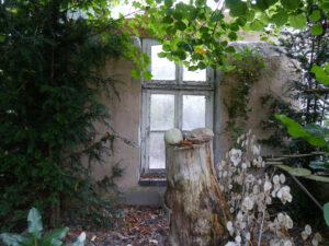 Potemkinsche Dörfer im Schatten, Garten Erna de Wolff