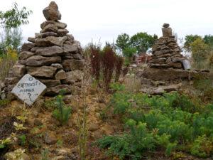 Euphorbien vor den kleinen Steinpyramiden, Hortus Insectorum