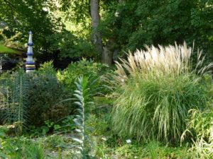 Schön ist es  im Schaugarten der Staudengärtnerei Extragrün