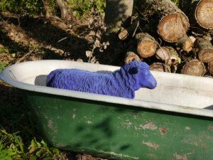 Im Sommer braucht jeder Abkühlung, auch in der Staudengärtnerei Extragrün