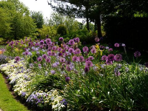 Blumenband im Park der Gärten