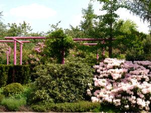 Immergrüner Garten im Park der Gärten, Bad Zwischenahn