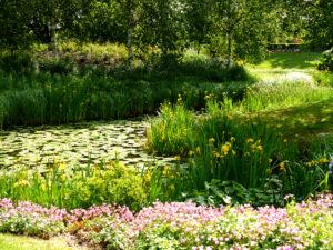 Wasserlandschaft im Park der Gärten, Bad Zwischenahn
