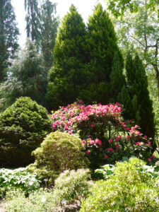 Rhododendronpark im Park der Gärten, Bad Zwischenahn