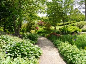 Im Ahorntal des Parks der Gärten, Bad Zwischenahn