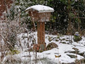 Der Winter kommt im März zurück in Wurzerlsgarten