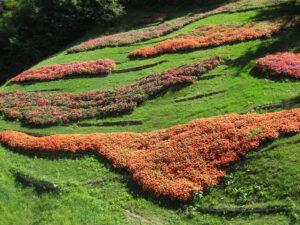 Blühende Beete im Steilhang beeindrucken in den Gärten von Schloss Trauttmansdorff, Meran