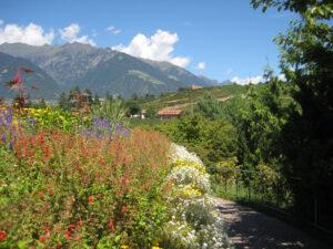 Neben den Wegen kann man viele Blumen auch auf Augenhöhe in den Gärten von Schloss Trauttmansdorff, Meran betrachten