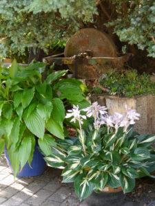Eventbereich  im Landhausgarten Hantelmann