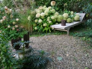 Hydrangea 'Annabelle' ruht auf der Liege aus im Landhausgarten Hantelmann