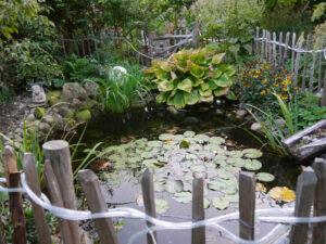 Teich im Landhausgarten Hantelmann