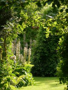 Durchgang zum Sonnengarten des Landhausgartens Hantelmann