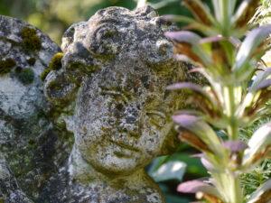Putte hinter Akanthusblüte im Landhaus Hantelmann