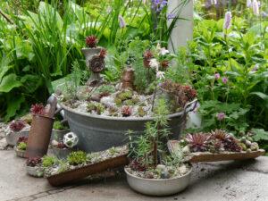 Wurzerlküche mit Sempervivum-Bepflanzung auf Terrasse in Wurzerlsgarten