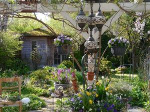 Frühlingsblüher auf der Terrasse von Wurzerlsgarten
