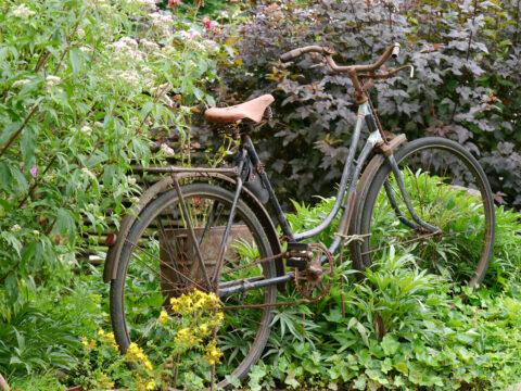 Leider kann man von München nicht mit dem Fahrrad zur Garten Tulln fahren.