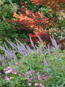 Erster Blick vom Vorgarten in den Garten Halwax