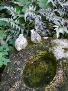 Rosen- und Clematisgarten Halwax