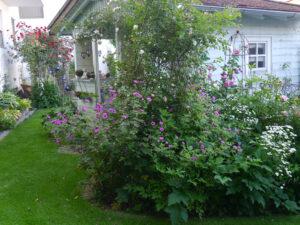 Gartenhäuschen, Rosen- und Clematisgarten Halwax