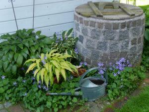 Eingangsbereich Gartenhäuschen, Garten Halwax