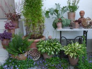 Der Topfgarten an der Hauswand, Garten Halwax