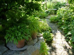 Vorderer Garten, Rosen- und Clematisgarten Halwax