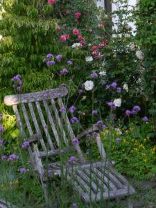 Rosen- und Clematisgarten, Garten Halwax