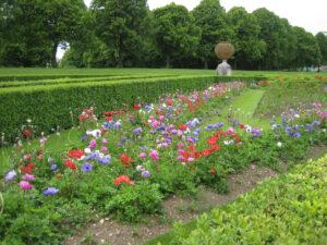 Pflanz-Übergangs-Zeit Frühlings- zum Sommerflor im Parterre Cliveden