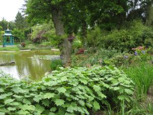 The Water Garden, der Wassergarten von Cliveden