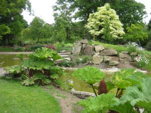 Water Garden in Cliveden